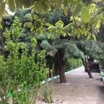 konyali-et-mangal (15)